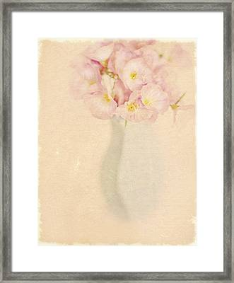 Pretty Primroses Framed Print by Linde Townsend