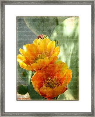 Prickly Pear Blooms Framed Print