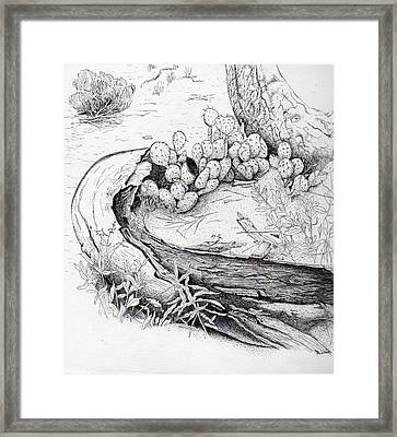 Prickly Pear Framed Print by Inger Hutton