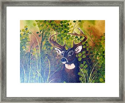 Pride Framed Print by Mary Matherne