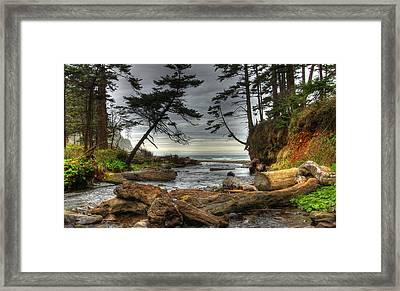 Primal Creek Framed Print