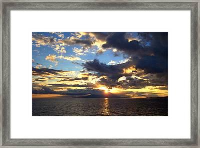 Primal Sun Framed Print by Sean McDaniel