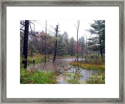Primal Visage Framed Print