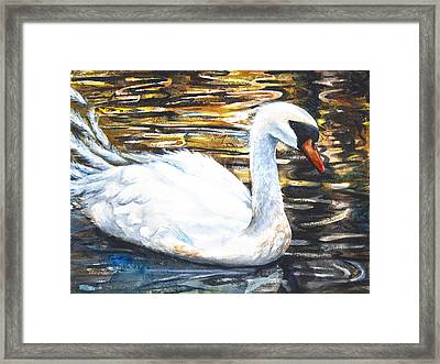 Prince Of Swans Framed Print