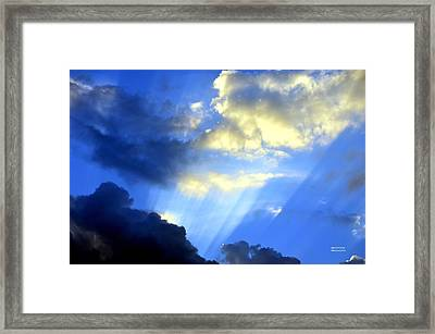 Prismed Framed Print by Maria Urso