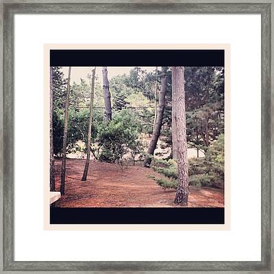 Probando El Nuevo Filtro, sierra Y Framed Print by Pablo Grippo
