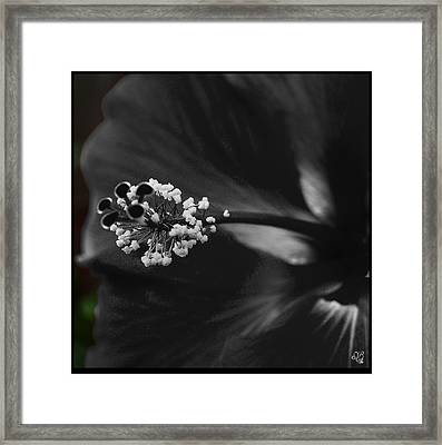 Projection In Black And Whiite Framed Print