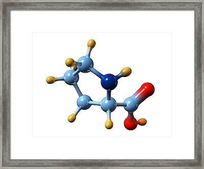 Proline, Molecular Model Framed Print