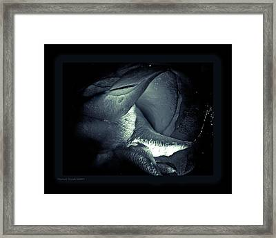 Prolong Framed Print by Monroe Snook
