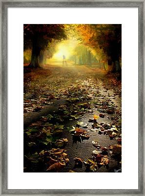 Promenade Framed Print by Igor Zenin