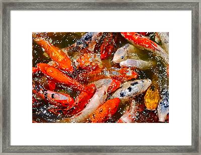 Prosperity Framed Print by Dorota Nowak