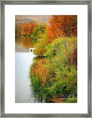 Prosser Autumn Docks Framed Print by Carol Groenen