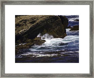Protected From The Sea Framed Print by Jo-Anne Gazo-McKim