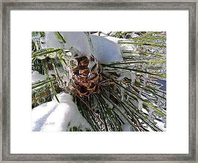Protected Seat Of The Soul Framed Print by Rotaunja