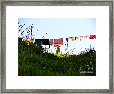 Protecting The Valuables Framed Print by Al Bourassa