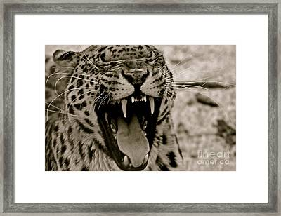 Protecting The Young Framed Print