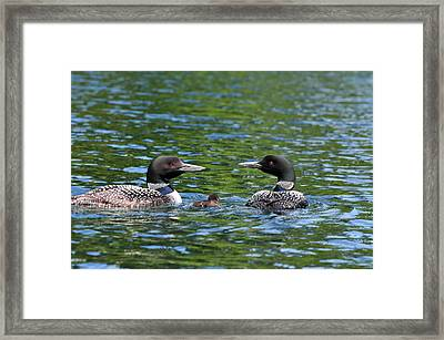 Protective Parents Framed Print