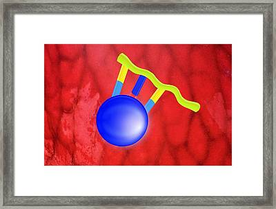 Protein Synthesis, Artwork Framed Print by Gombert, Sigrid