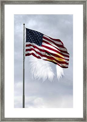 Proudly We Hail Framed Print by Peter Chilelli