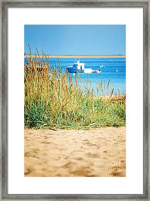 Provincetown Ma Framed Print by HD Connelly