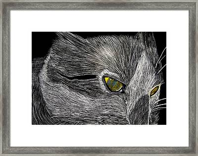 Framed Print featuring the drawing Prowl by Lisa Brandel