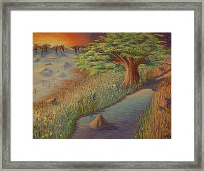 Psalm 1 Framed Print by Thomas Maynard
