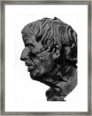 Pseudo-seneca Framed Print