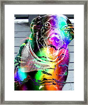 Psychedelic Black Lab With Kerchief Framed Print by Barbara Griffin