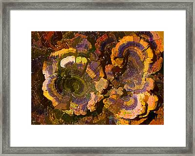 Psychedelic Fungi Framed Print