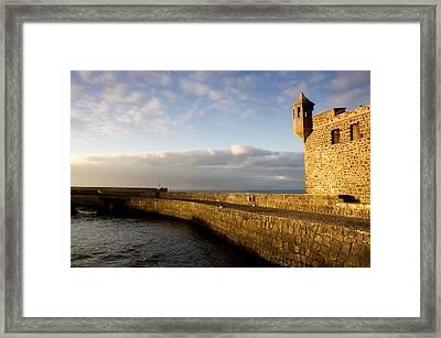 Puerto De La Cruz - Tenerife - Canary Island - Spain Framed Print by Fabrizio Troiani
