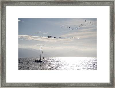 Puerto Vallarta, Mexico Sailboat With Framed Print