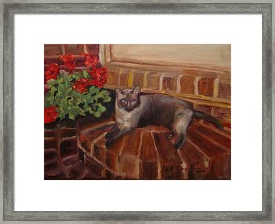 Framed Print featuring the painting Puff by Carol Berning