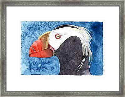 Puffin Framed Print by Eunice Olson