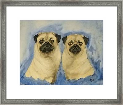 Framed Print featuring the painting Pugs by Edwin Alverio