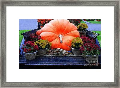 Pumpkin And Flowers Framed Print