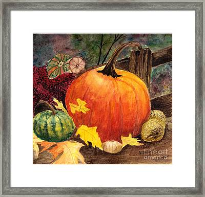 Pumpkin And Gourds Framed Print by John Small