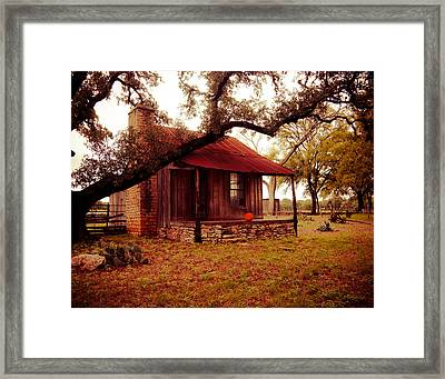 Pumpkin House Framed Print by Sonja Quintero