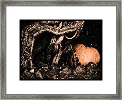 Albuquerque, New Mexico - Pumpkin Framed Print