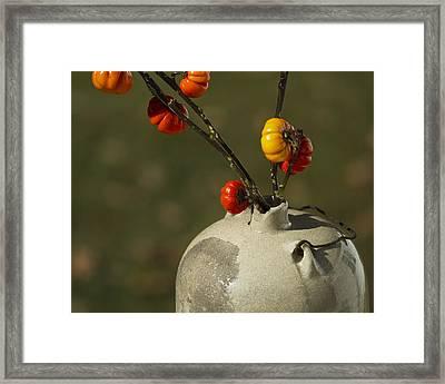 Pumpkin On A Stick In An Old Primitive Moonshine Jug Framed Print by Kathy Clark