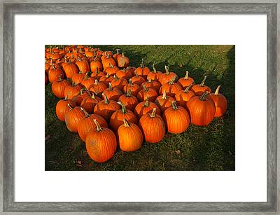 Pumpkin Piles Framed Print by LeeAnn McLaneGoetz McLaneGoetzStudioLLCcom