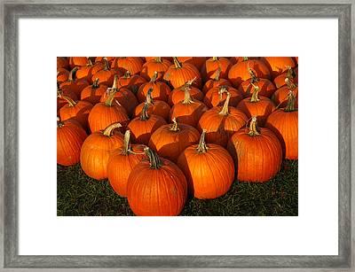 Pumpkin Strike Framed Print by LeeAnn McLaneGoetz McLaneGoetzStudioLLCcom
