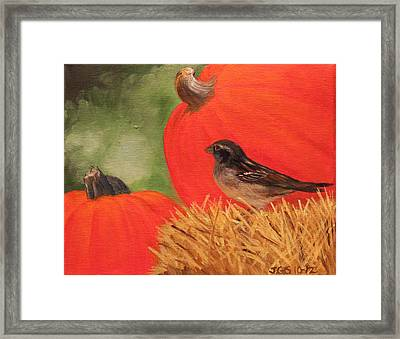 Pumpkins And Sparrow Framed Print