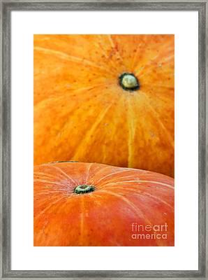Pumpkins Background Framed Print