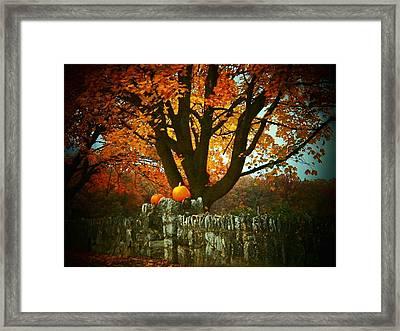 Pumpkins On The Wall Framed Print by Joyce Kimble Smith