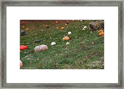 Pumpkins Framed Print by Susan Herber
