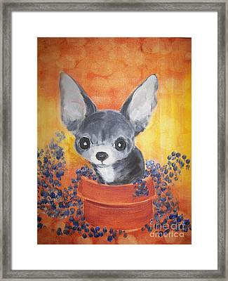 Pup In A Pot 11 Framed Print