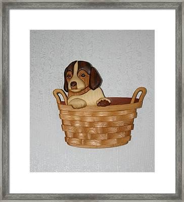 Pup In Basket Framed Print by Bill Fugerer