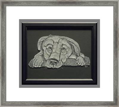 Puppy Framed Print by Akoko Okeyo