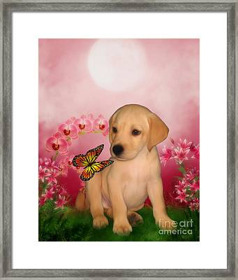 Puppy Innocence Framed Print by Smilin Eyes  Treasures