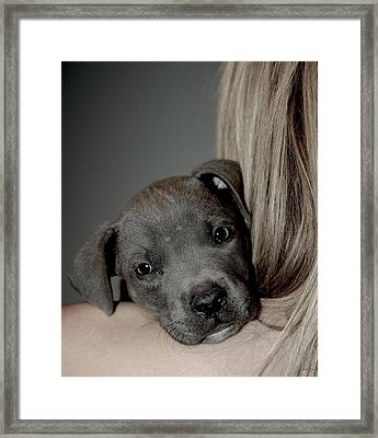 Puppy Love Framed Print by Janet Smith